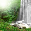 Stock Photo: Waterfalls