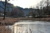 Pond at winter — Photo