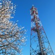 Stock Photo: GSM tower