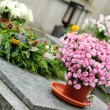 Stock Photo: Funeral flowers