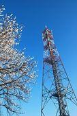 Torre gsm — Fotografia Stock