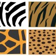 Stock Vector: Animals fur pattern
