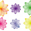 Stock Vector: Floral variations