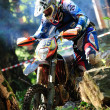 Stock Photo: Enduro cross championship
