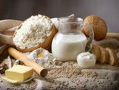 Dairy produce — Stock Photo