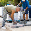 Stock Photo: Man at work paving stones