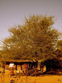 CHOZA AFRICANA — Stock Photo