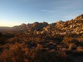 Nevada Desert Morning — Stock Photo