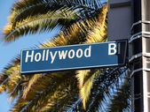 Hollywood Blvd Palms — Stock Photo