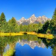 Schwabacher's Landing in the Grand Tetons — Stock Photo