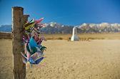 Paper Cranes at Manzanar — Stock Photo