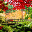 Bridge in a Garden - Stock Photo
