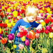 Stock Photo: Boy and Tulips