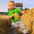 Stock fotografie: Young Boy with Straw