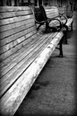 Boardwalk Benches — Stock Photo