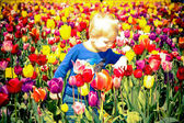 Boy and Tulips — Stock Photo