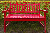 Red Bench with Flowers — Stock Photo