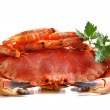 Crab with shrimp and parsley on a white background. - Foto Stock