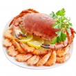 Crab with shrimp and parsley on a white background. — Stok fotoğraf
