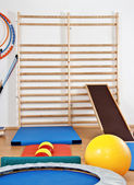 Interior gym with mats and balls — Stok fotoğraf