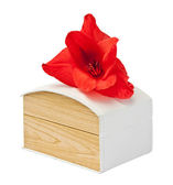 Gift box with flower gladiolus. — Stock Photo