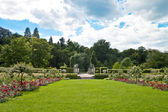Park of roses. Germany, Baden-Baden. — Stock Photo