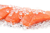 Salmon on ice — Stock Photo