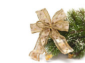 Christmas tree branch with a bow — Stock Photo
