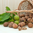 Walnuts with green leaves and immature fruit — Stock Photo