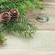 Pine branch with cones on the background of unplaned boards — Foto Stock