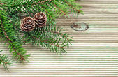 Pine branch with cones on the background of unplaned boards — ストック写真