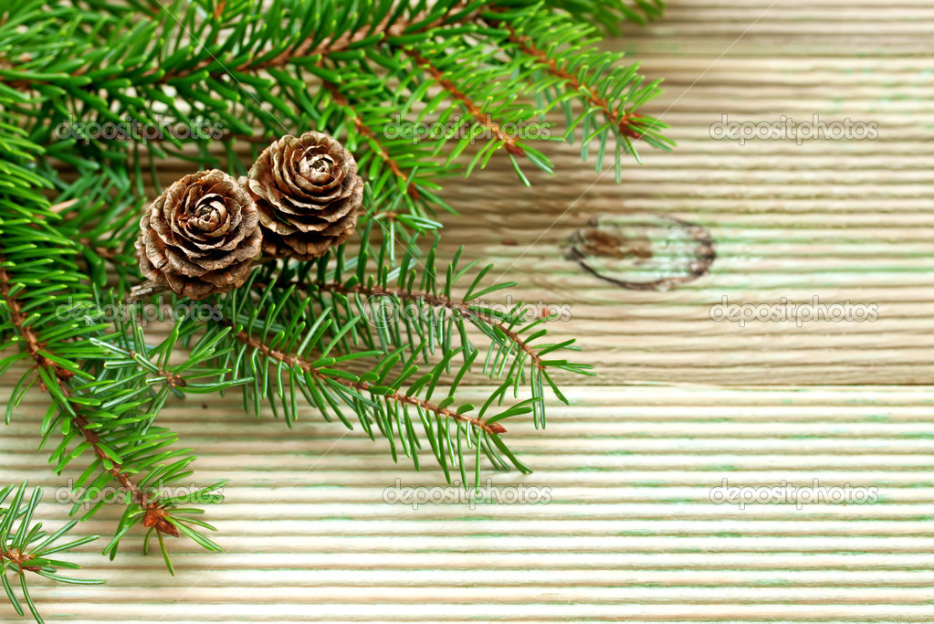 Pine branch with cones on the background of unplaned boards — Stock Photo #7958825