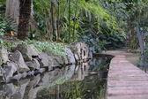 Parque botaniczny — Foto de Stock
