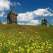 Stock Photo: Windmills