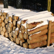 Pile of wood during the winter — Stock Photo
