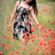 Stock Photo: Beautiful young girl on the field with poppy flowers