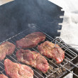 Barbecue during winter time — Stock Photo #7919248
