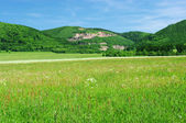 Summer view on hills with quarry — Stock Photo