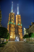 Cathedra at night in Wroclaw, Poland — Stock Photo