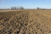 Agricultural view on plowed field — Stock Photo