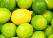 Limes and one lemon from supermarket — Stock Photo