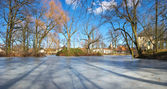 Park scenery with frozen pond — Stock Photo