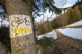 Bicycle tourist track at the beginning of spring — Foto Stock
