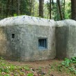 Old concrete bunker in forest — Stock Photo #7930655