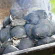Coal on the grill - Stock Photo