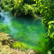 Stock Photo: Emerald water in national park Krka, Croatia