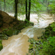 Tributary and big river after rain — Stock Photo