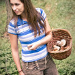 Young woman with basket of mushrooms — Stock Photo