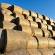 Stock Photo: Bales of hay