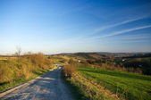 Spring view with road in Carpathian hills — Stock Photo
